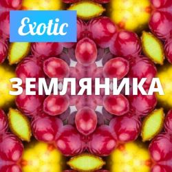 Exotic ЗЕМЛЯНИКА 10мл