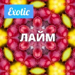 Exotic ЛАЙМ 10мл