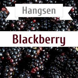 Hangsen Blackberry 10 мл