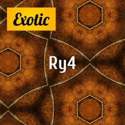 Exotic RY4 10мл