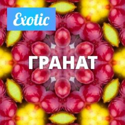 Exotic ГРАНАТ 10мл